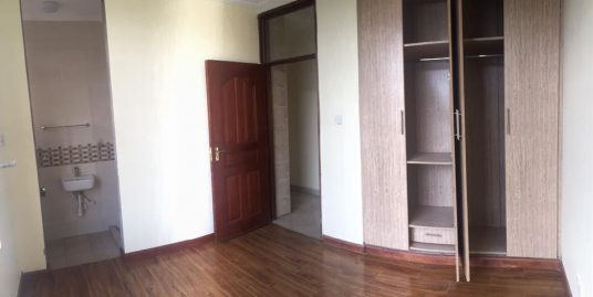 Beautiful 2 bedroom apartments for rent with tall ceilings and large windows Palace apartment